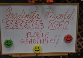 """Serbare ,,Florile  Grădiniţei!""""- iunie 2016-Grădinița ,,PIȘCOȚEL"""" Ploiești – galerie Foto-Video"""
